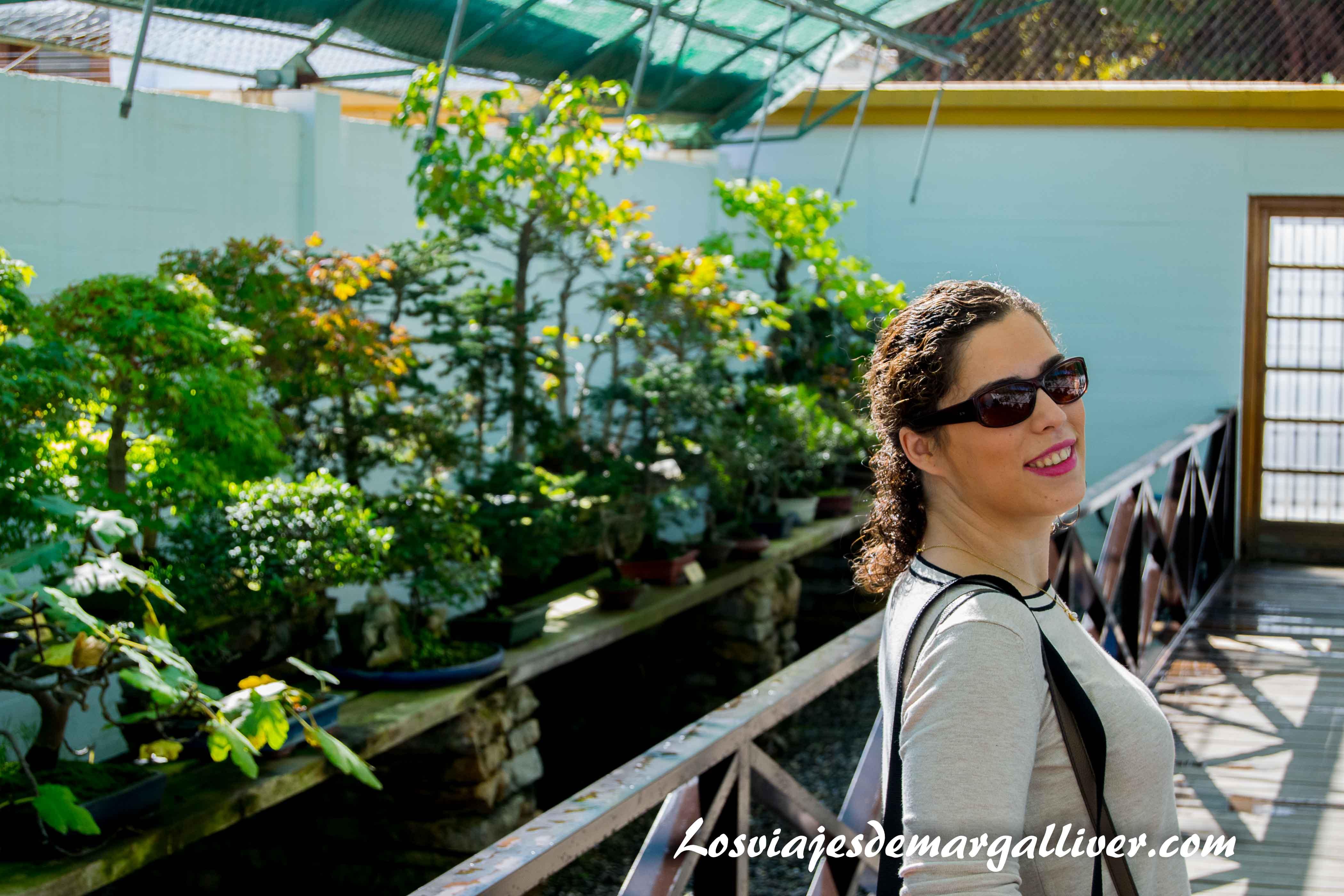 Margalliver en el museo del Bonsai de Marbella - Los viajes de Margalliver